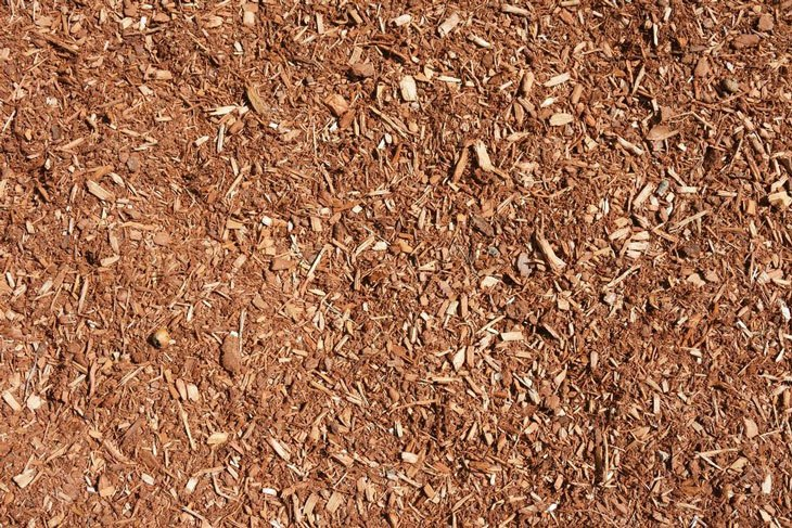 compost vs mulch mulch