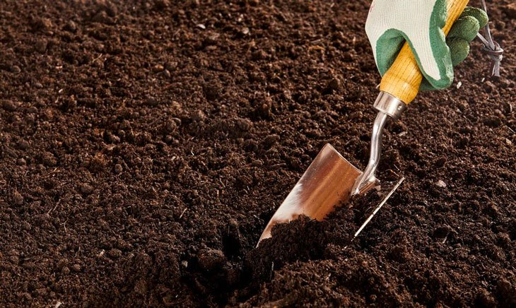 soil vs dirt - soil