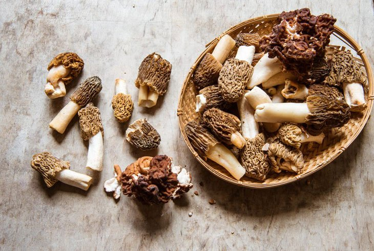 how to clean wild morel mushrooms