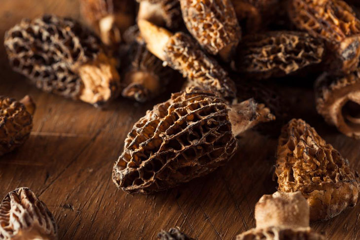 how to dry morel mushrooms 004