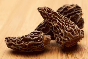 how to dry morel mushrooms 005