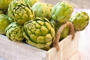 how to grow artichokes from seed 001