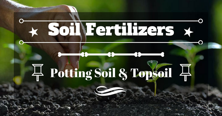 potting soil vs topsoil