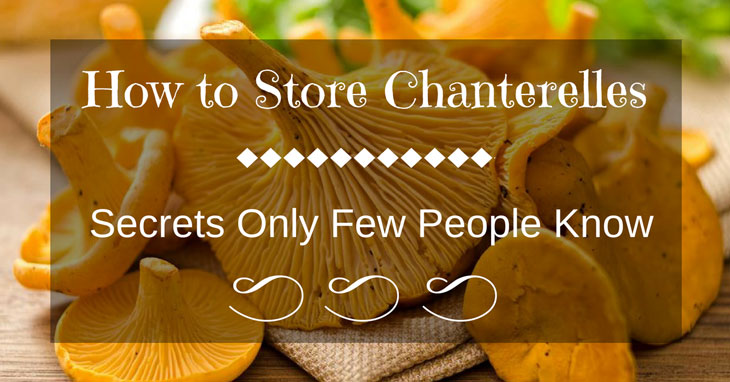 how to store chanterelles