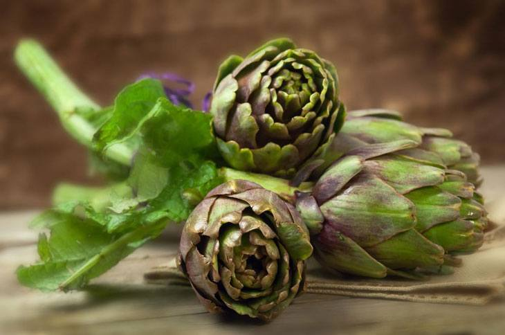 when to harvest artichoke 002
