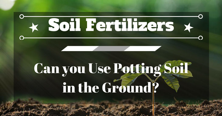 Can you Use Potting Soil in the Ground