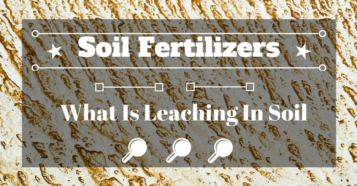 What Is Leaching In Soil