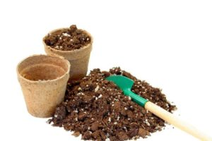 how to make peat moss 01