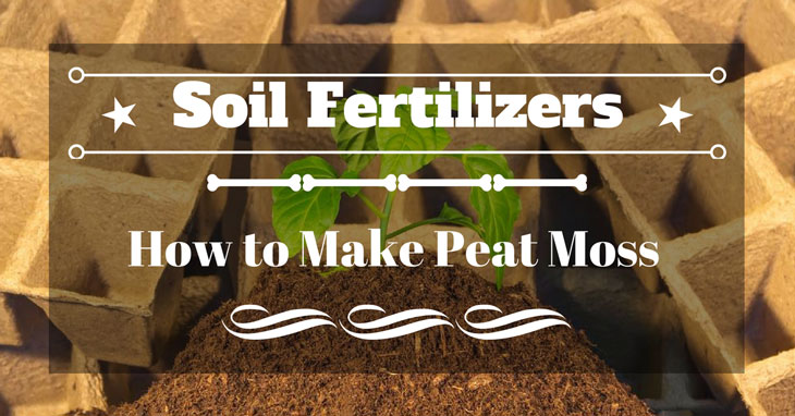 how to make peat moss