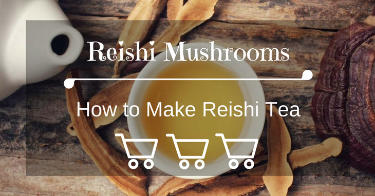 How to Make Reishi Tea