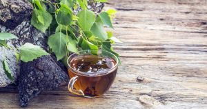 How to Make Chaga Tea 01