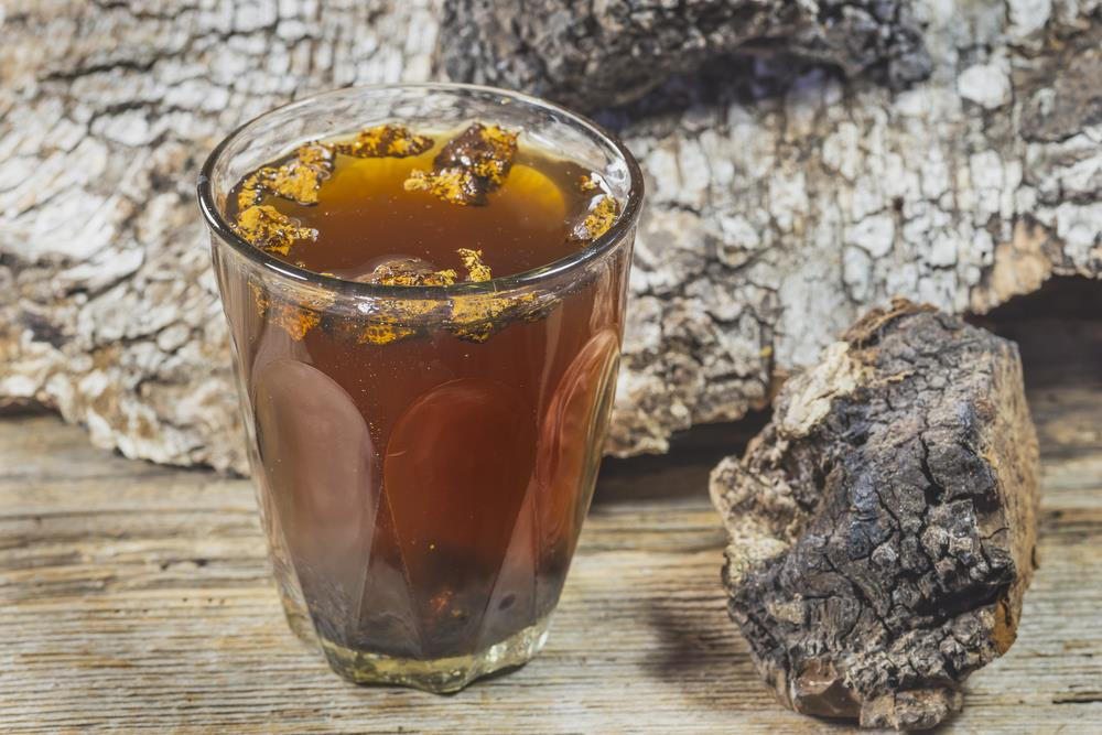 How to Make Chaga Tea 03