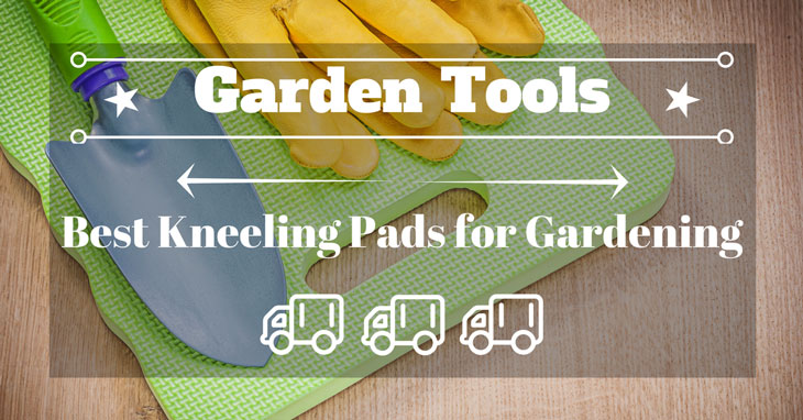 Best Kneeling Pads for Gardening