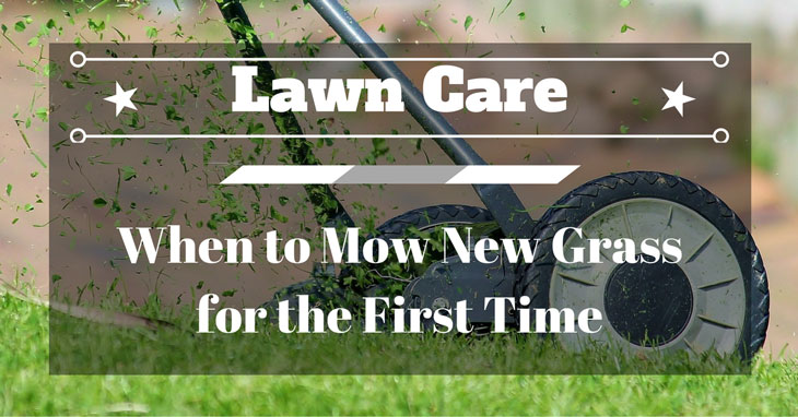 when to mow new grass