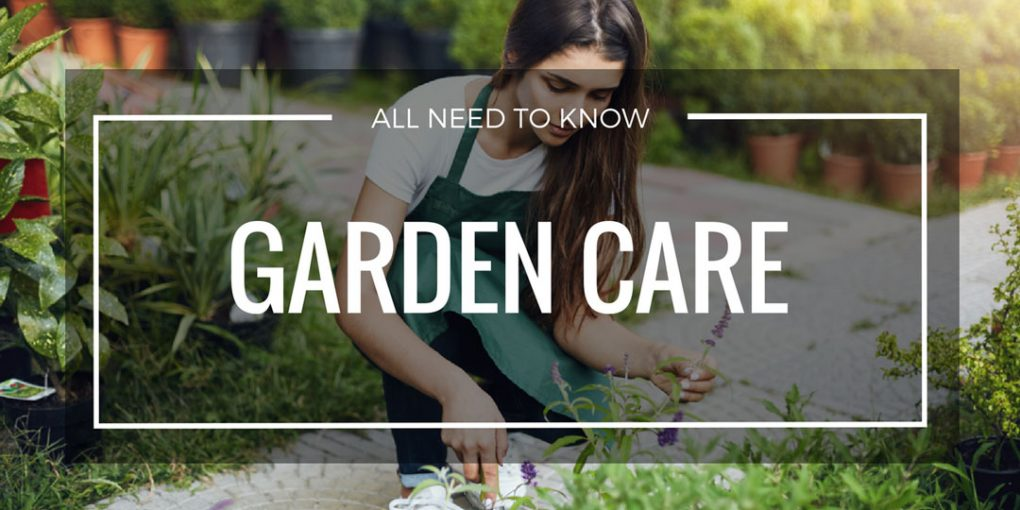 garden care page