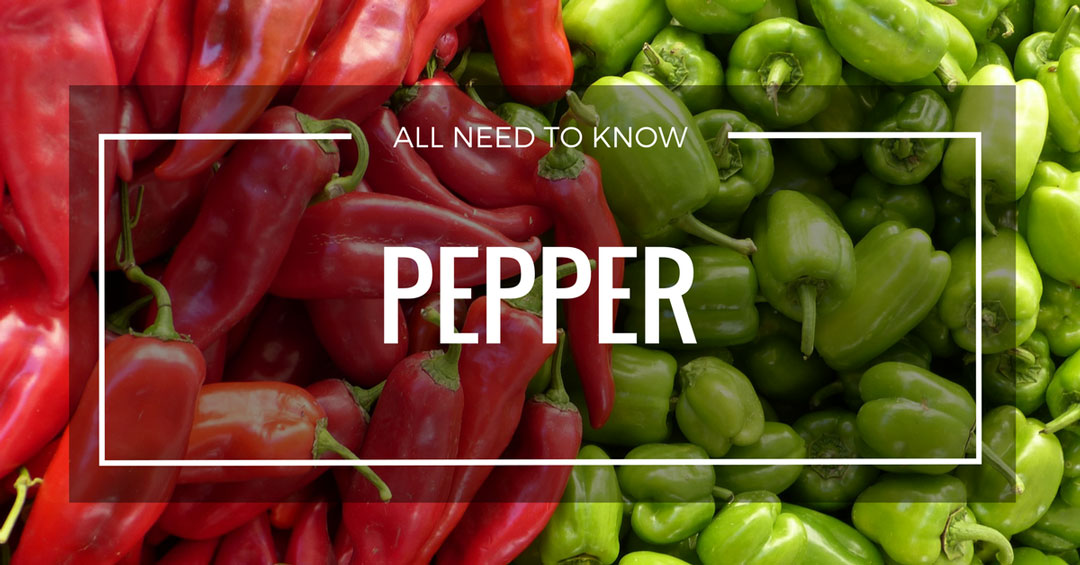 grow pepper page