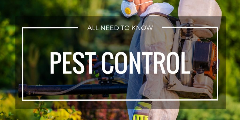 Pest Control Page