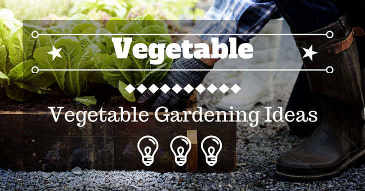 Vegetable Gardening Ideas