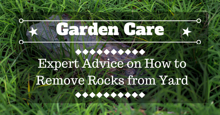 Remove Rocks From Yard
