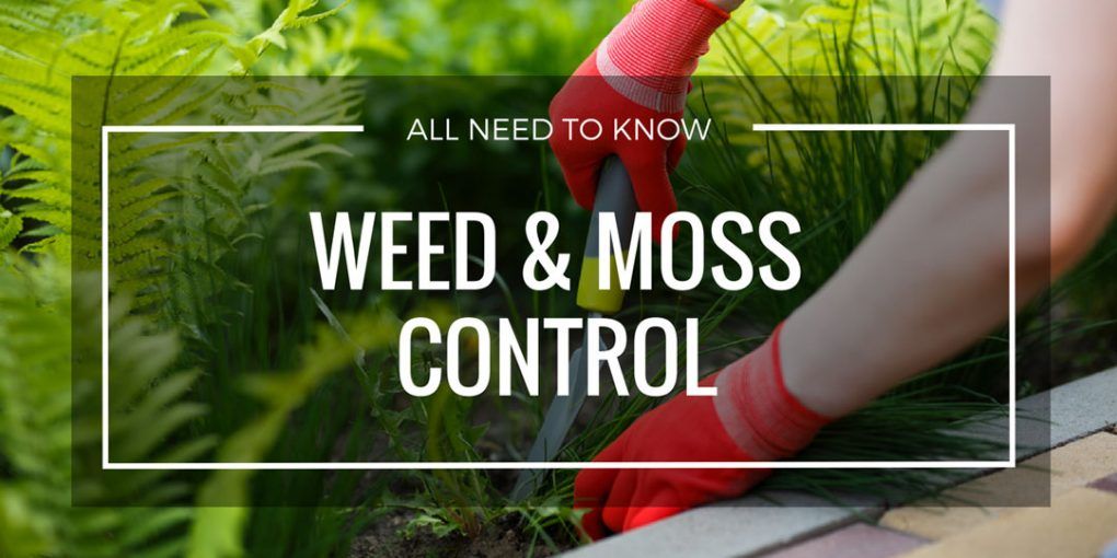 Weed & Moss Control Page