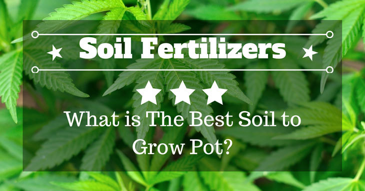 best soil to grow pot