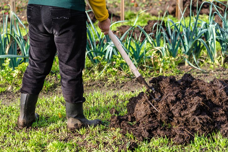 how to prep soil for a vegetable garden - Mix In-Plant Food
