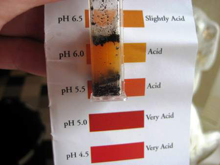 soil ph acid
