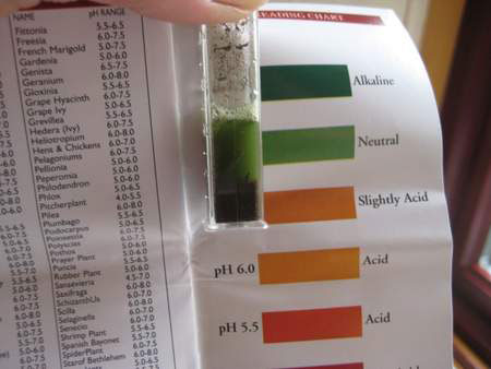 soil ph neutral