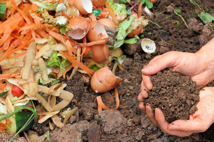 how to make compost from weeds 001