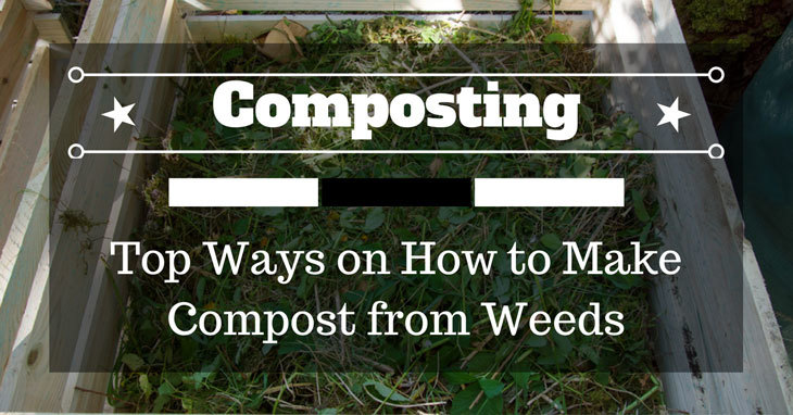 how to make compost from weeds