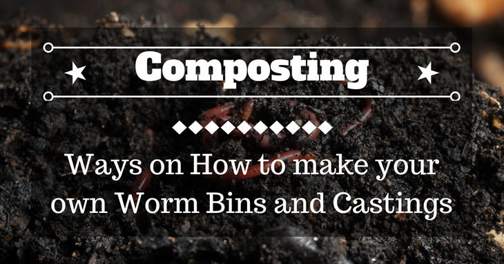 how to make your own worm bins and castings