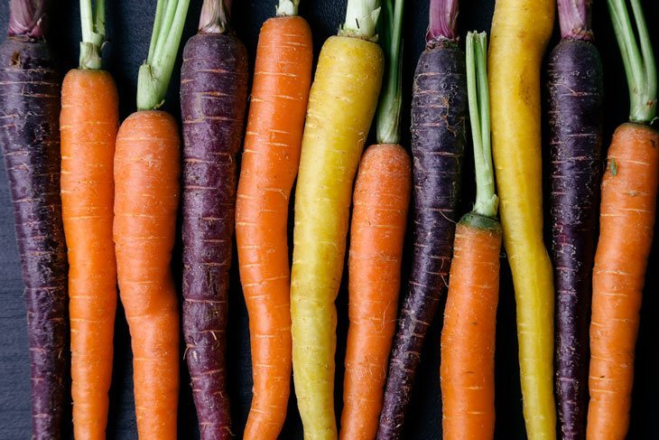 when are carrots ready to pick - Check the Color of the Carrot